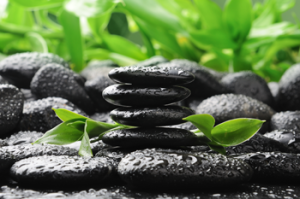 bigstock-black-zen-stones-and-bamboo-in-26927825